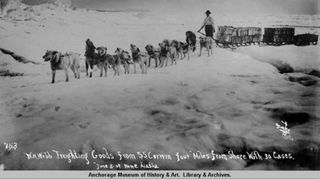 Freighting goods in from the Corwin to Nome, 1907