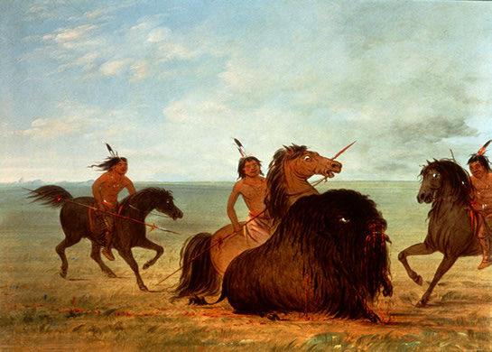 Catlincamanchees_lancing_bull_nat_gall